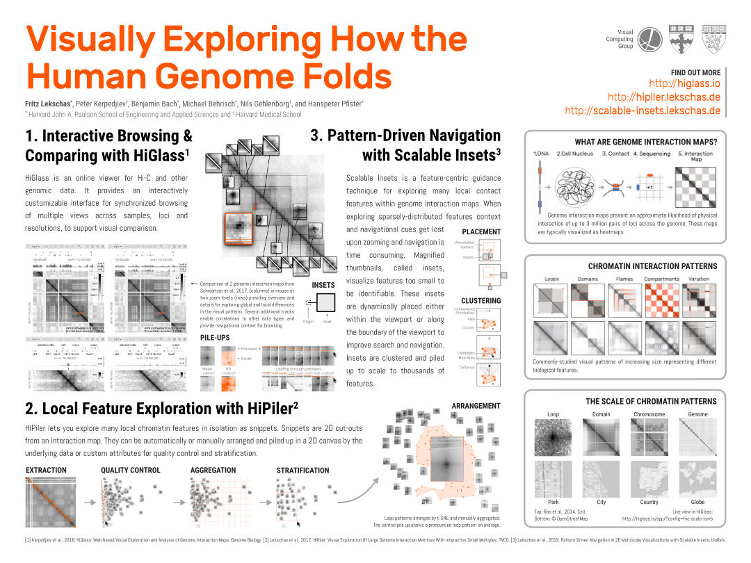 Visually Exploring How the Human Genome Folds